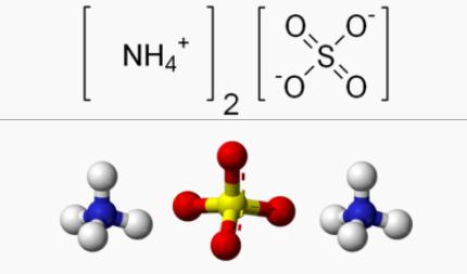amonium sulfat