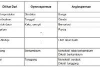 tabel perbedaan tumbuhan angiospermae dan gymnospermae