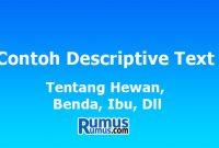 Contoh Descriptive Text