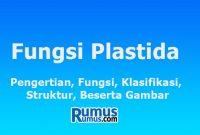 fungsi plastida