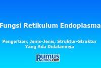 fungsi retikulum endoplasma