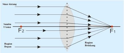 lensa cembung 1